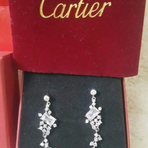 Cartier Branch Leaf Diamond Earring Set For Her Price In Pakistan