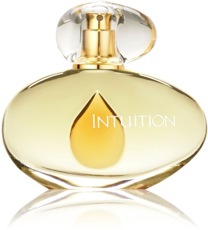 Estée Lauder Intuition 100ml EDP Price in Pakistan